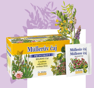 Müllerov čaj s echinaceou a rooibosom n.s.20x1.5g